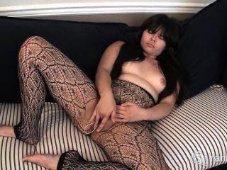 Hermine asiático toying seu bichano peludo