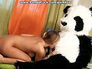 Festa do brinquedo do sexo com um urso de panda horny