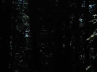 Clássico xxx: fantasias privadas 1 (1983)