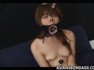 Japonês suga com uma grande boca aberta gag