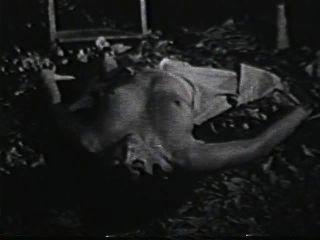 Softcore nudes 590 cena dos anos 70 2