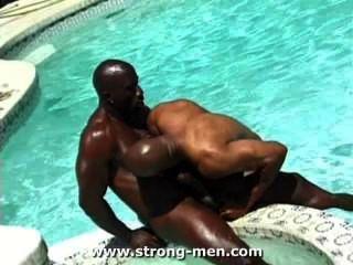 Incríveis pedaços de músculos negros