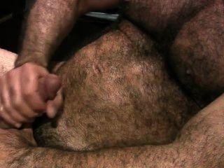 Big apexxx peludo