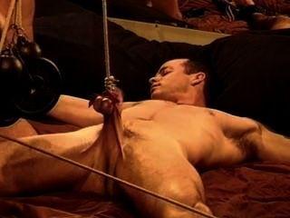 Músculo cbt, bash suas bolas, bater seu pau