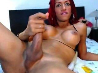 Transexual sexy subiu