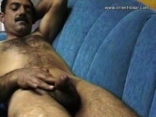 Urso urso mustafa