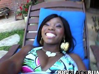 Estrela preta grossa do ebony do pintainho