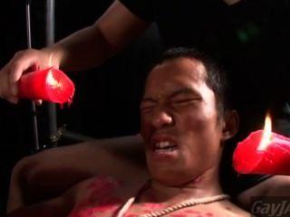 Laço de cera asiática anal