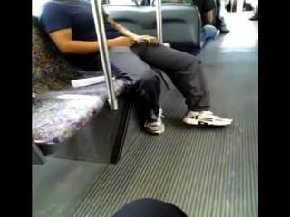 Horny no ônibus (para pegar uma mosca?)