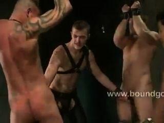 Dois mestres kinky e dois escravos submissos
