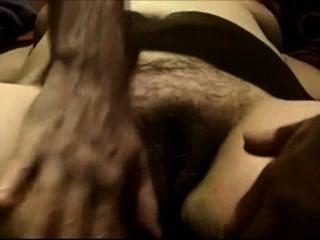 Tocando, molhados, maduro, peludo, bichano, closeup
