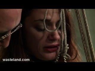 Masmorra do sexo do bdsm da masmorra gravatas sub bastante ao bambo e atormentam seu bichano