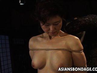 Asiático, babe, corda, servidão, cena