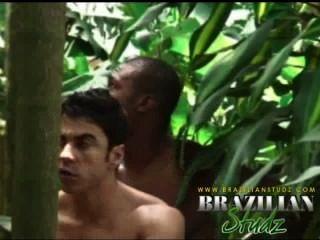 Selva sexual