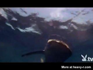 Meninas nuas em uma gaiola de tubarão